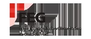 FEG Logo Schweiz